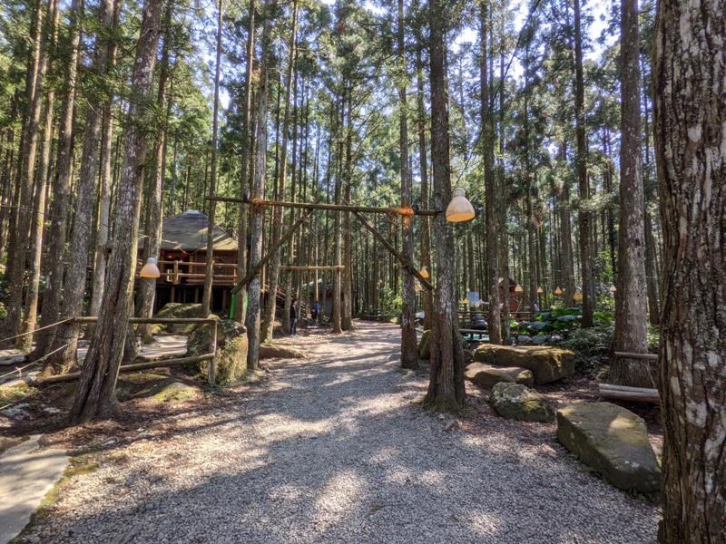 guanxi03 關西-馬武督探索森林(綠光森林) 風和日麗輕鬆走步道