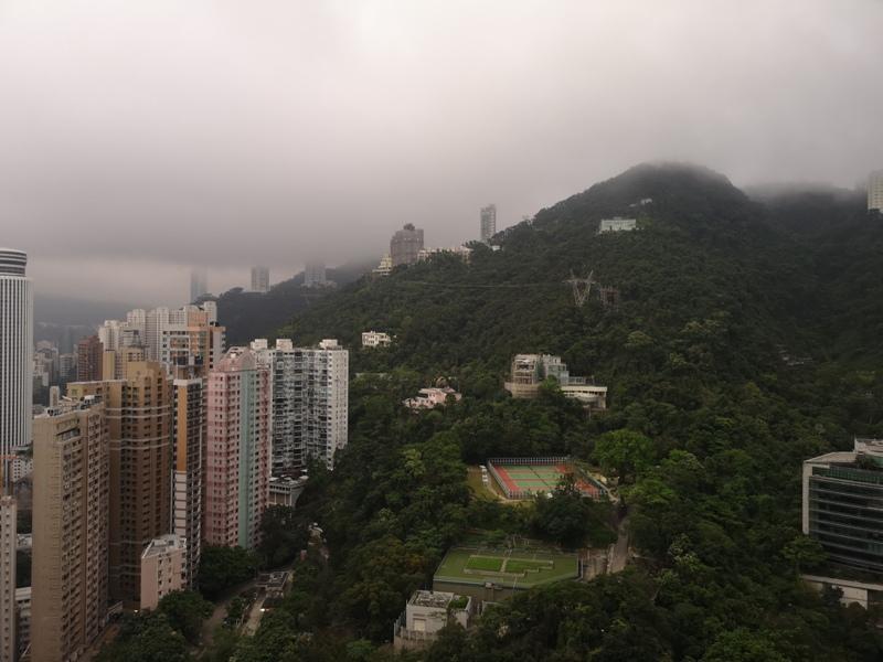 conradhk55 HK-香港Conrad 太古廣場五星級港麗酒店 可愛小熊小鴨作陪