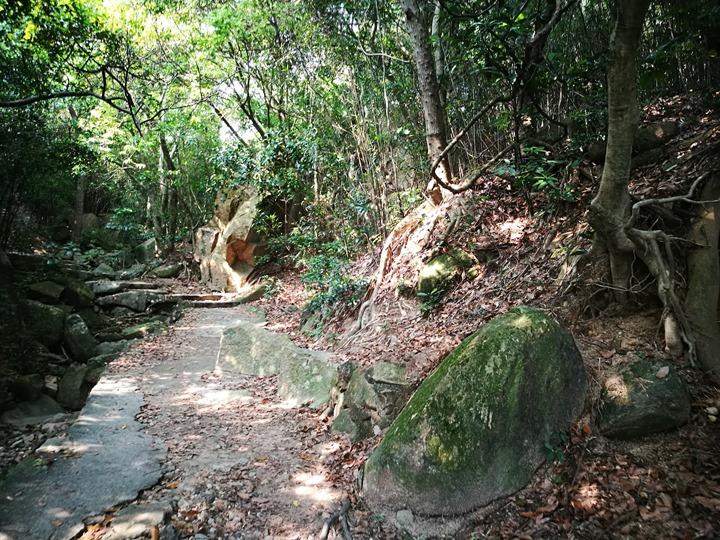 dragonbackmt.05 HK-亞洲最美市區行山徑-龍脊(港島徑第8段)