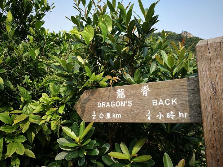 dragonbackmt.07 HK-亞洲最美市區行山徑-龍脊(港島徑第8段)