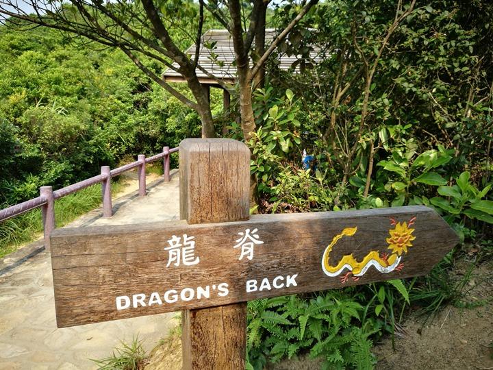 dragonbackmt.10 HK-亞洲最美市區行山徑-龍脊(港島徑第8段)