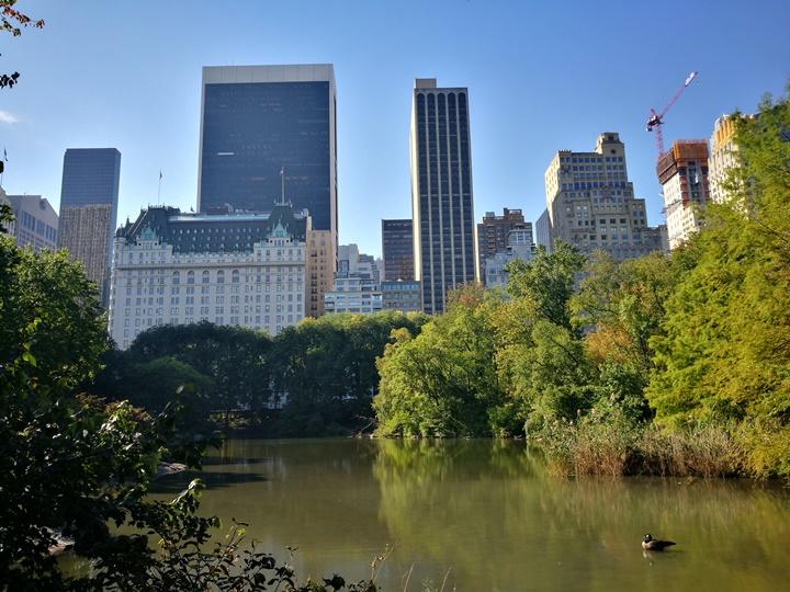 centralpark48 New York-果真大蘋果之紐約真好玩 中央公園 躺著曬太陽也愜意的好所在
