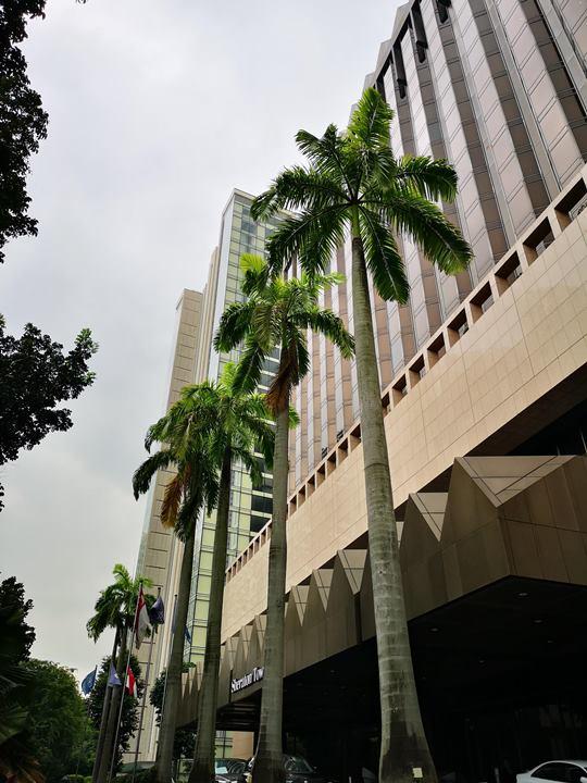 sheratontowersin01 Singapore-Sheraton Tower商務飯店交通方便