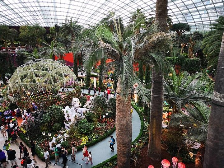 gardens-by-the-bay18 Singapore-Gardens by the Bay之Flower Dome/Cloud Forest新加坡的巨大溫室...盛夏最好的去處