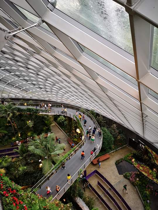gardens-by-the-bay42 Singapore-Gardens by the Bay之Flower Dome/Cloud Forest新加坡的巨大溫室...盛夏最好的去處
