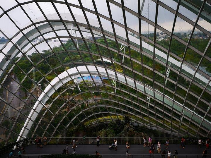gardens-by-the-bay48 Singapore-Gardens by the Bay之Flower Dome/Cloud Forest新加坡的巨大溫室...盛夏最好的去處