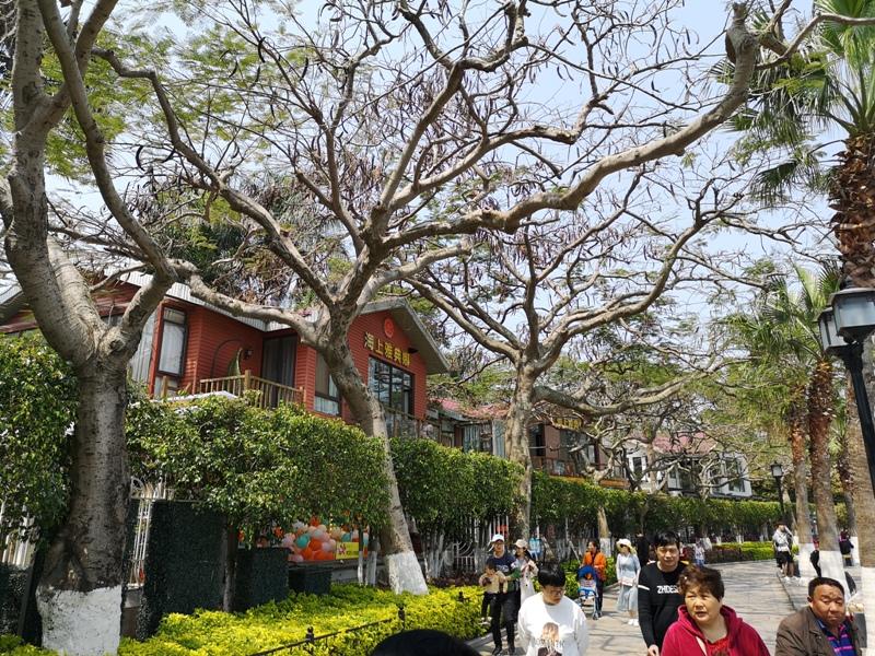 kulangsuuu13 Kulangsu-鼓浪嶼 中國最美的城區 距離台灣最近的世界文化遺產