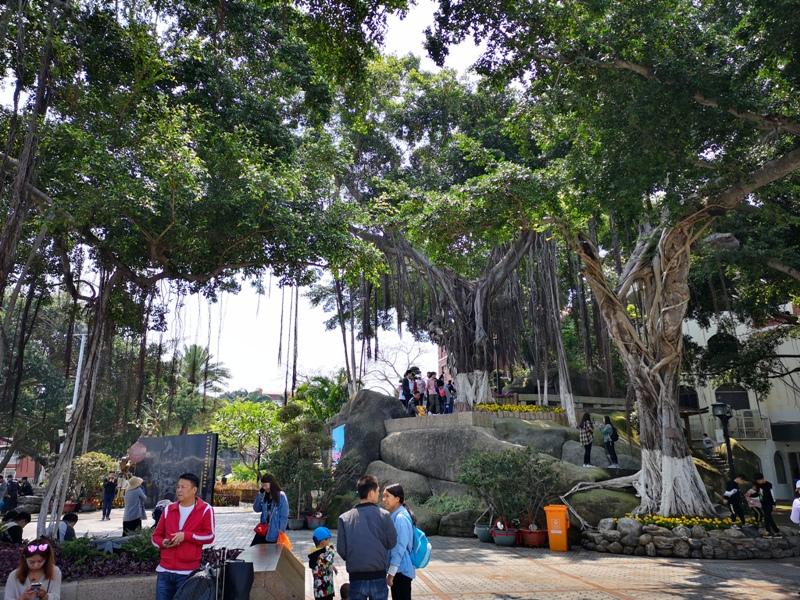 kulangsuuu16 Kulangsu-鼓浪嶼 中國最美的城區 距離台灣最近的世界文化遺產
