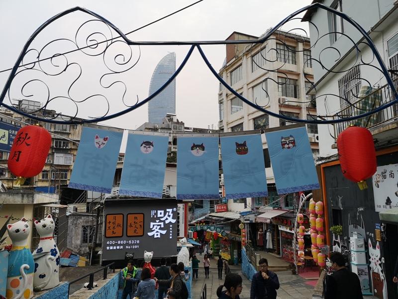shapowei38 Xiamen-廈門也文青 沙坡尾藝術西區與貓街 好好拍!!!