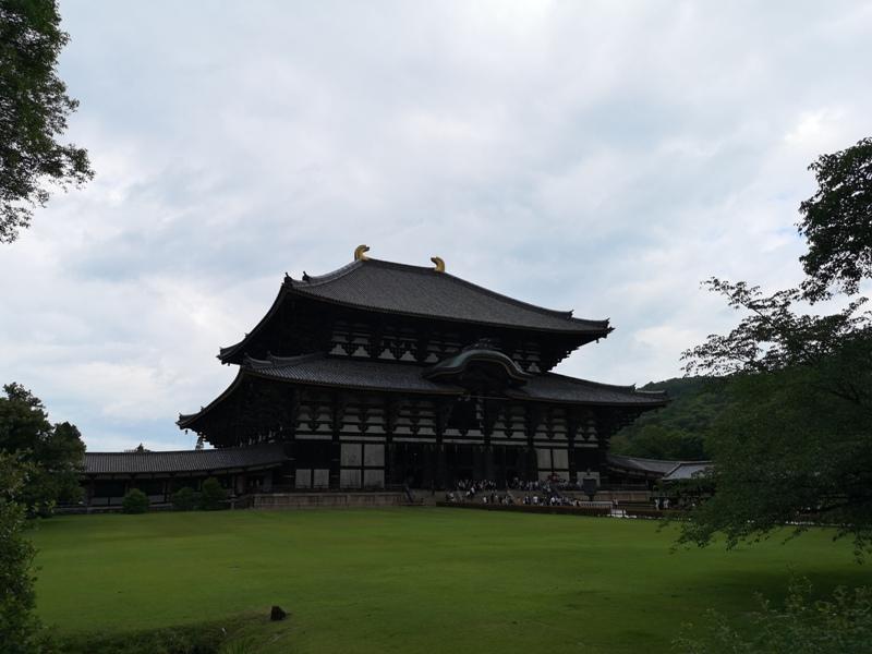 todaiji03 Nara-奈良小旅遊 世界文化遺產 東大寺&春日大社 搶食仙貝的小鹿亂撞