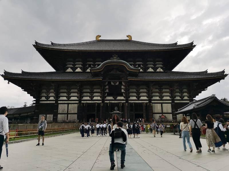 todaiji05 Nara-奈良小旅遊 世界文化遺產 東大寺&春日大社 搶食仙貝的小鹿亂撞
