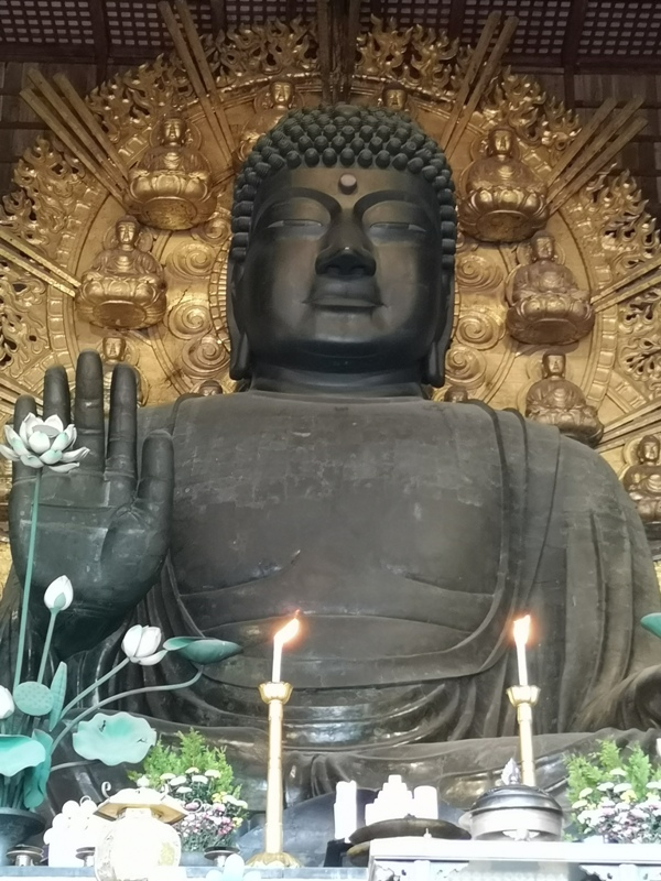 todaiji10 Nara-奈良小旅遊 世界文化遺產 東大寺&春日大社 搶食仙貝的小鹿亂撞