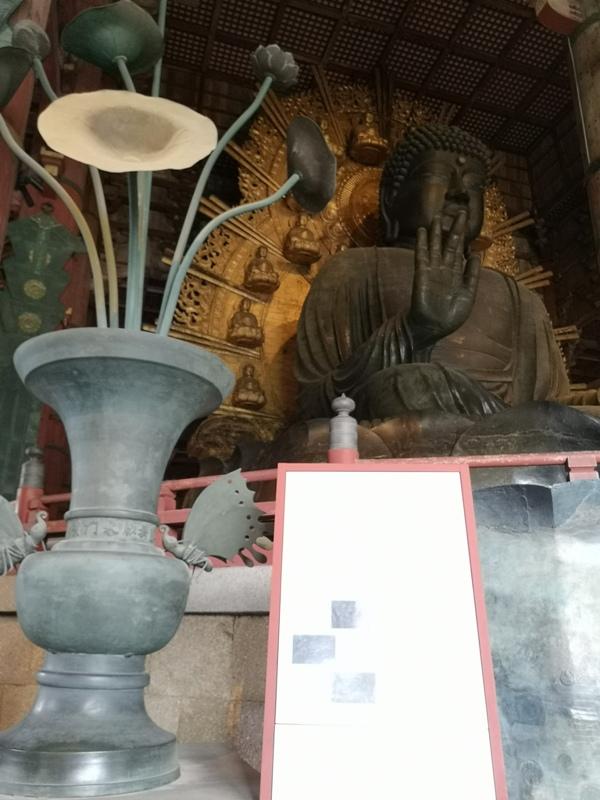 todaiji11 Nara-奈良小旅遊 世界文化遺產 東大寺&春日大社 搶食仙貝的小鹿亂撞