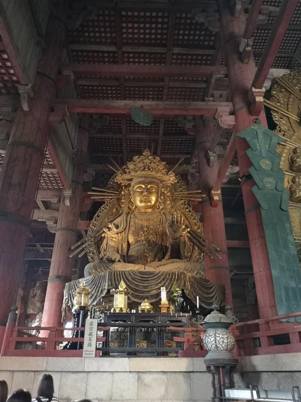 todaiji13 Nara-奈良小旅遊 世界文化遺產 東大寺&春日大社 搶食仙貝的小鹿亂撞