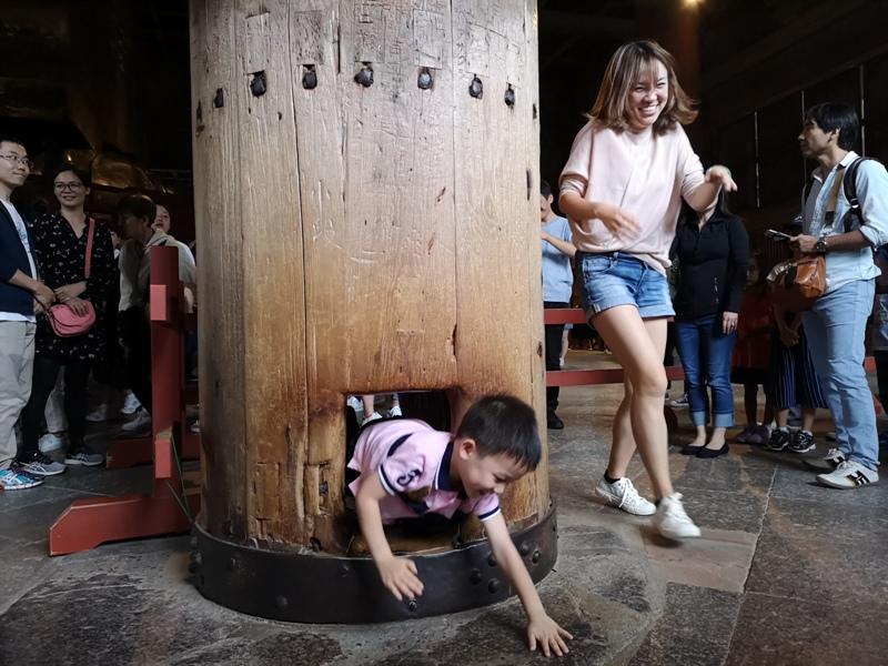 todaiji18 Nara-奈良小旅遊 世界文化遺產 東大寺&春日大社 搶食仙貝的小鹿亂撞