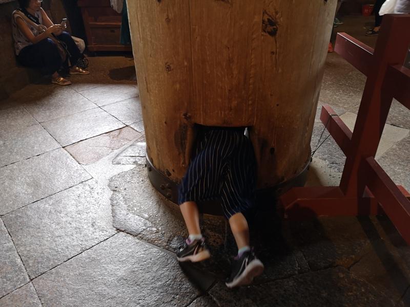 todaiji20 Nara-奈良小旅遊 世界文化遺產 東大寺&春日大社 搶食仙貝的小鹿亂撞