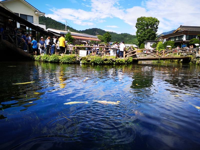 oshinohakkai17 Nakayamako-忍野八海 富士山旁湧泉小村落 看水玩水賞富士