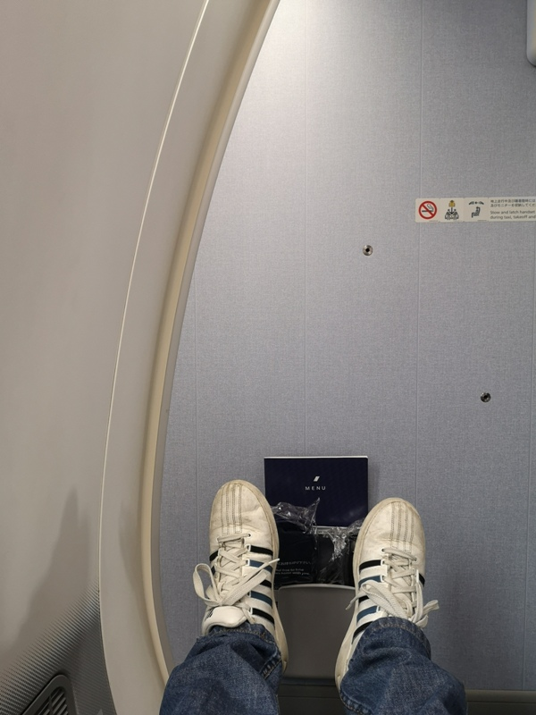 flyvie10 201909台北維也納 ANA787-9夢幻客機商務艙初體驗