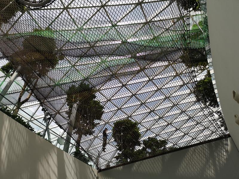 jewelchangiiii05 Singapore-Jewel Changi星耀樟宜 城市中的森林谷 綠意中人工瀑布雨漩渦超吸精 新加坡樟宜機場必訪