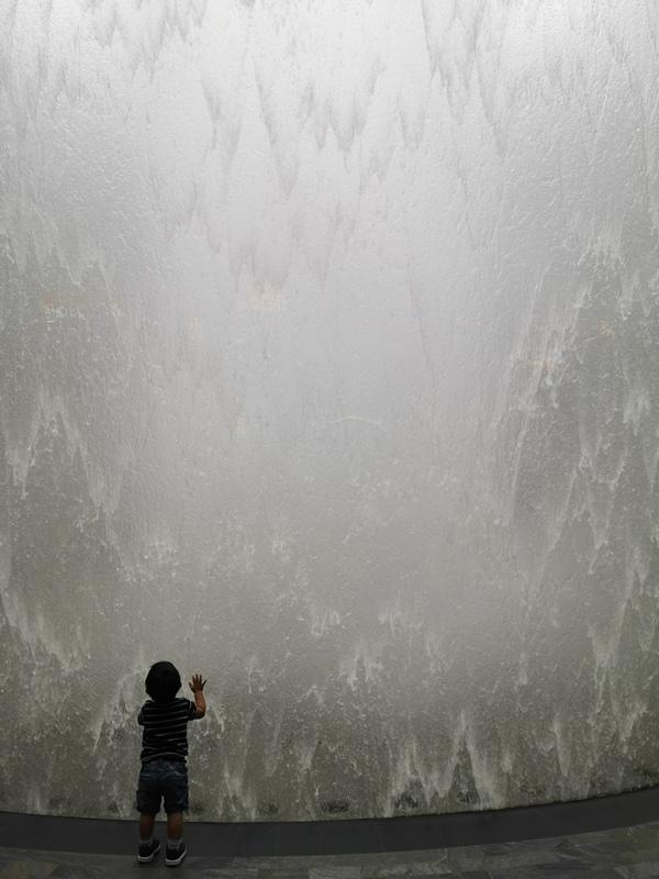 jewelchangiiii16 Singapore-Jewel Changi星耀樟宜 城市中的森林谷 綠意中人工瀑布雨漩渦超吸精 新加坡樟宜機場必訪