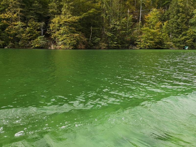 konigssee024 Konigssee-國王湖 好山好水好美麗...人間仙境不誇張