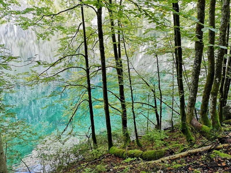 konigssee063 Konigssee-國王湖 好山好水好美麗...人間仙境不誇張