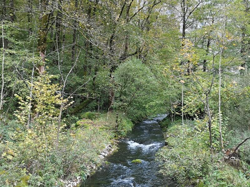 konigssee096 Konigssee-國王湖 好山好水好美麗...人間仙境不誇張
