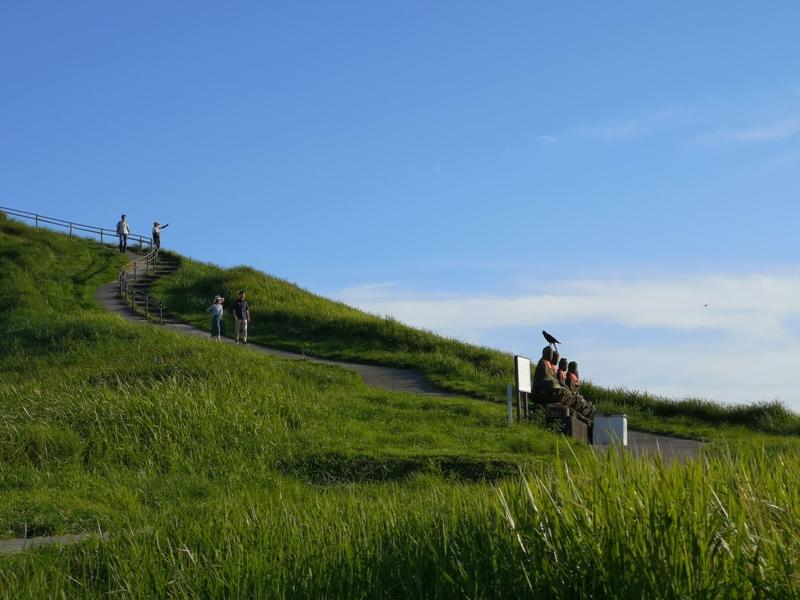 mtomuro00121 Izu-輕鬆愜意 與眾不同的火山口輕鬆逛 超美大室山
