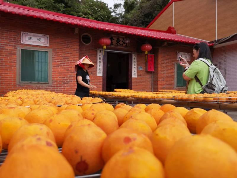 xinpu0103 新埔-味衛佳 北台灣秋天美麗的風景 好吃好玩好好拍的柿餅