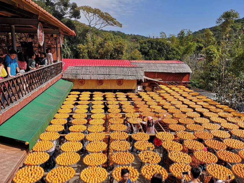 xinpu0119 新埔-味衛佳 北台灣秋天美麗的風景 好吃好玩好好拍的柿餅