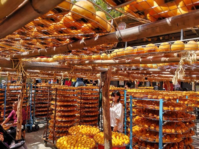 xinpu0129 新埔-味衛佳 北台灣秋天美麗的風景 好吃好玩好好拍的柿餅
