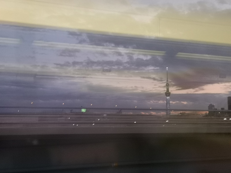 flyingnrt10 201912松山羽田成田桃園 年末東京小出差