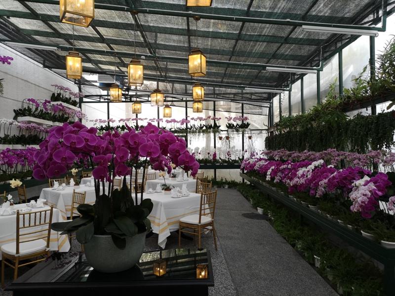 majestickl33 Kuala Lumpur-Majestic Hotel古典雅致 百年建築的的內涵 吉隆坡大華酒店