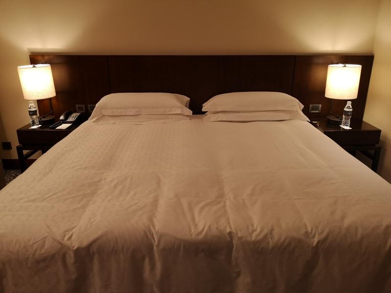 sheratontaipei11 中正-台北喜來登大飯店 無驚喜的商務飯店