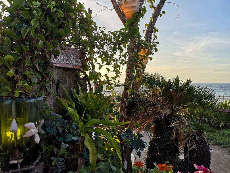 bossanovaa15 三芝-美的不像話的淺水灣夕陽...吃吃有異國情調的巴莎諾瓦Bossa Nova