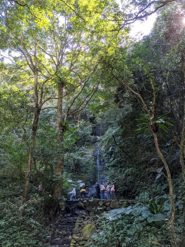 guanxi14 關西-馬武督探索森林(綠光森林) 風和日麗輕鬆走步道