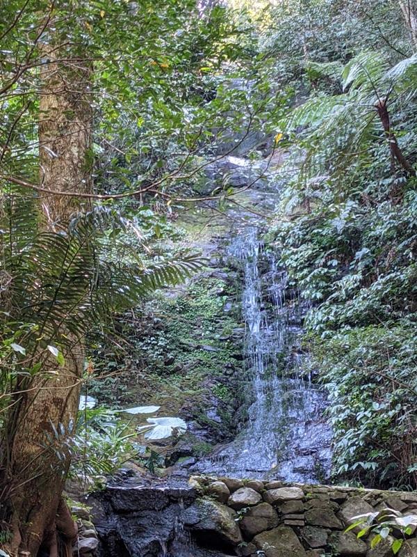 guanxi16 關西-馬武督探索森林(綠光森林) 風和日麗輕鬆走步道