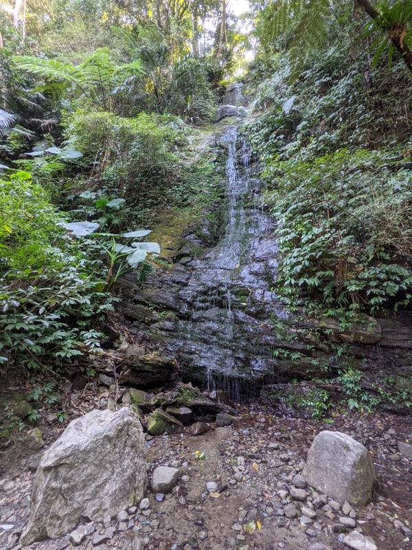 guanxi17 關西-馬武督探索森林(綠光森林) 風和日麗輕鬆走步道