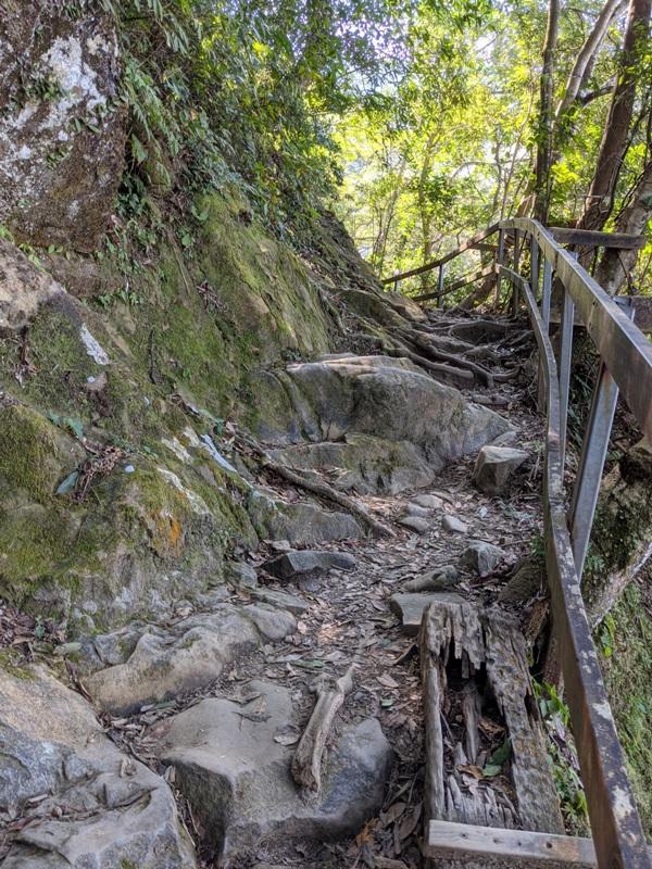 guanxi18 關西-馬武督探索森林(綠光森林) 風和日麗輕鬆走步道