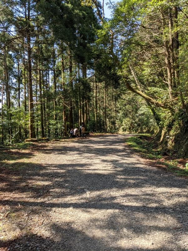 guanxi25 關西-馬武督探索森林(綠光森林) 風和日麗輕鬆走步道