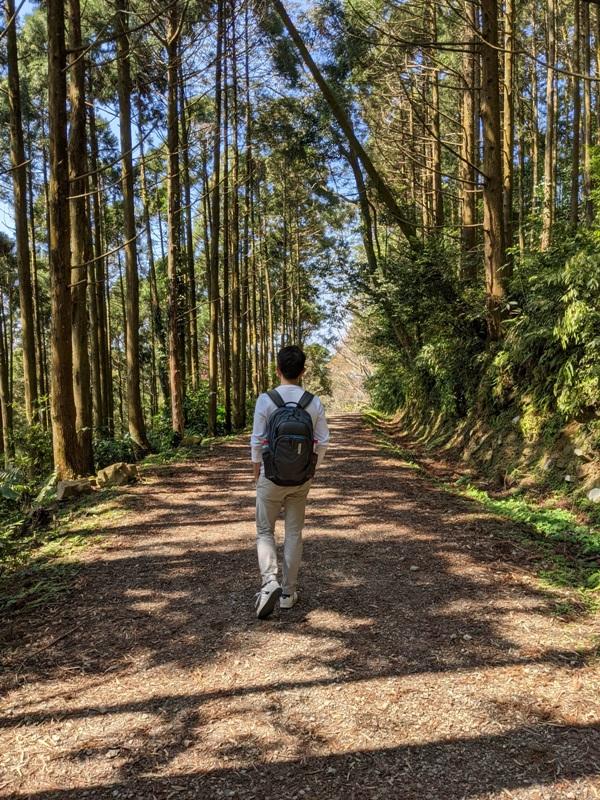 guanxi27 關西-馬武督探索森林(綠光森林) 風和日麗輕鬆走步道