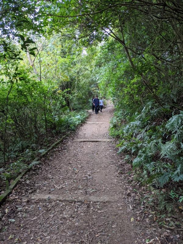 toughmanhill2223 八里-觀音山 硬漢嶺 景色開闊享受臺北盆地大屯山與台灣海峽