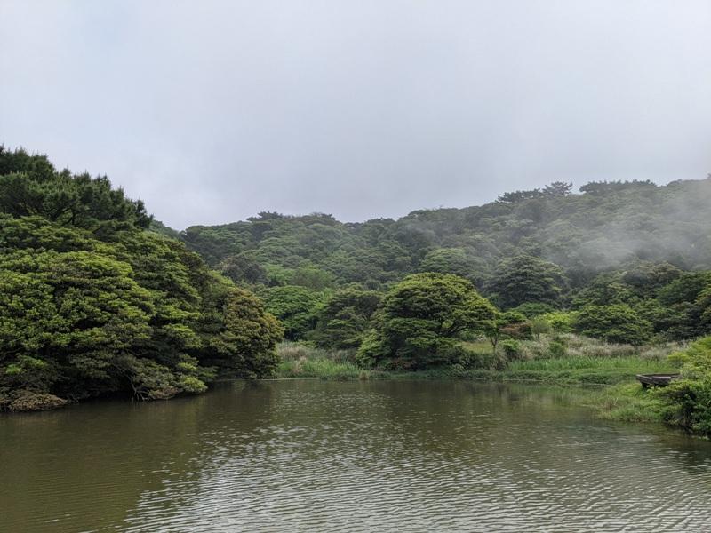 datung02 陽明山-大屯山 芒草箭竹 捕捉美麗的雲海