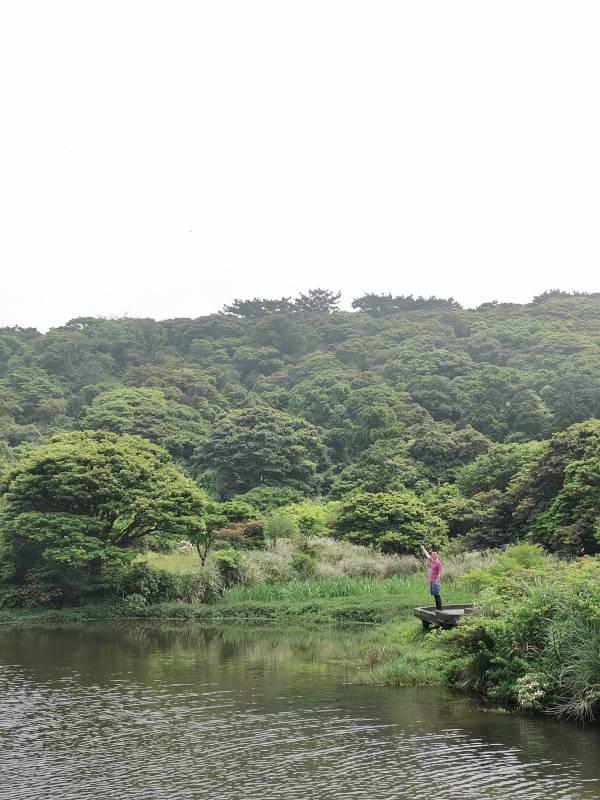 datung04 陽明山-大屯山 芒草箭竹 捕捉美麗的雲海
