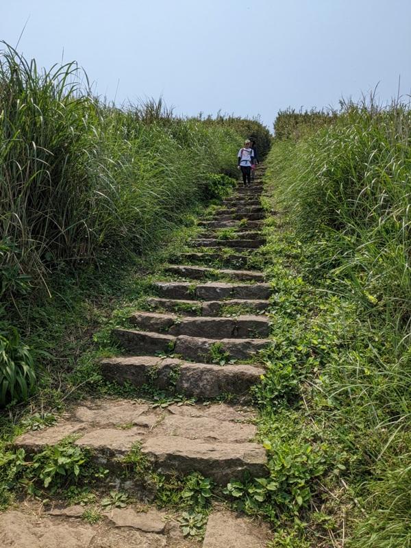 datung24 陽明山-大屯山 芒草箭竹 捕捉美麗的雲海