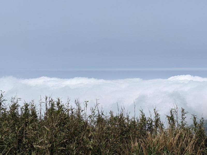 datung26 陽明山-大屯山 芒草箭竹 捕捉美麗的雲海