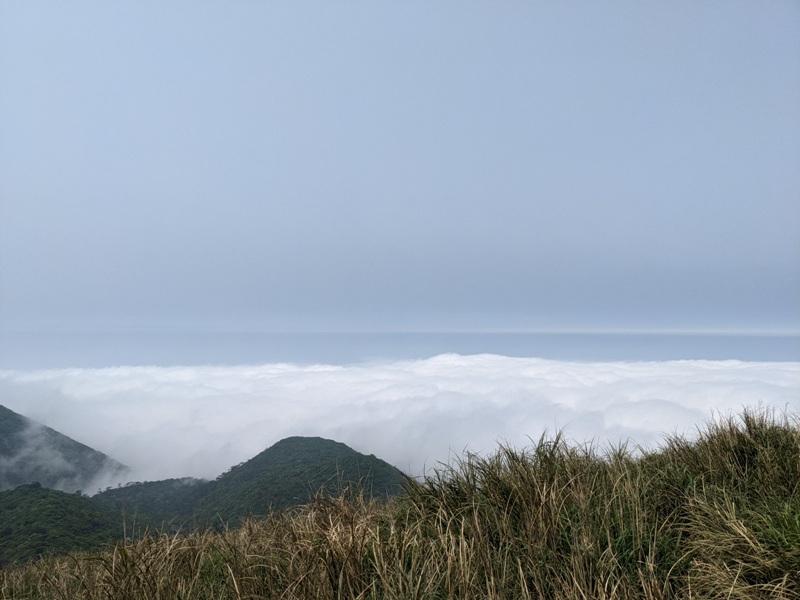datung31 陽明山-大屯山 芒草箭竹 捕捉美麗的雲海