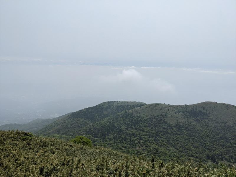 datung42 陽明山-大屯山 芒草箭竹 捕捉美麗的雲海