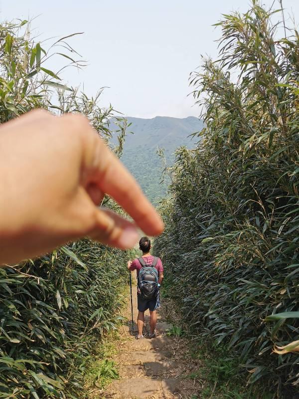 datung46 陽明山-大屯山 芒草箭竹 捕捉美麗的雲海