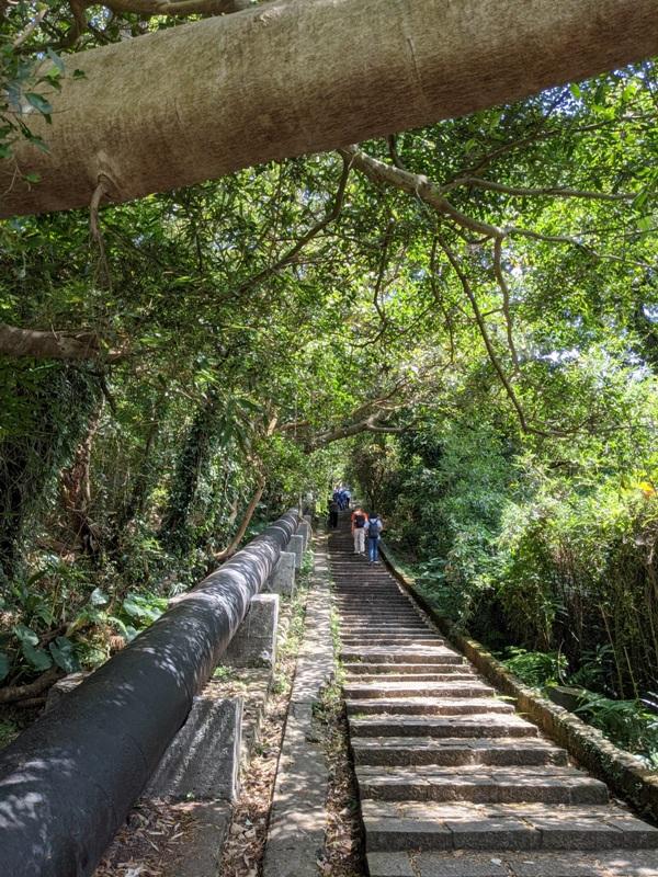 tienmutrail11 士林-天母親山古道(水管道) 無緣的翠峰瀑布
